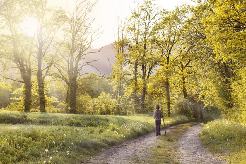 path-andar-field-landscape-160636